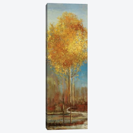 Ginkgo Tree I Canvas Print #ASJ114} by Asia Jensen Art Print