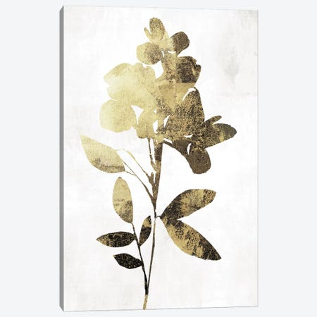 Gold Botanical I Canvas Print #ASJ120} by Asia Jensen Canvas Art Print