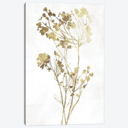 Gold Botanical II Canvas Print #ASJ121} by Asia Jensen Canvas Art Print