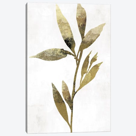 Gold Botanical IV Canvas Print #ASJ123} by Asia Jensen Canvas Print