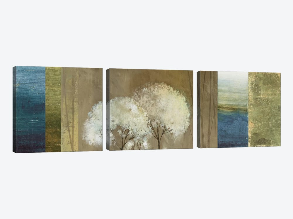 Grasses I by Asia Jensen 3-piece Canvas Wall Art