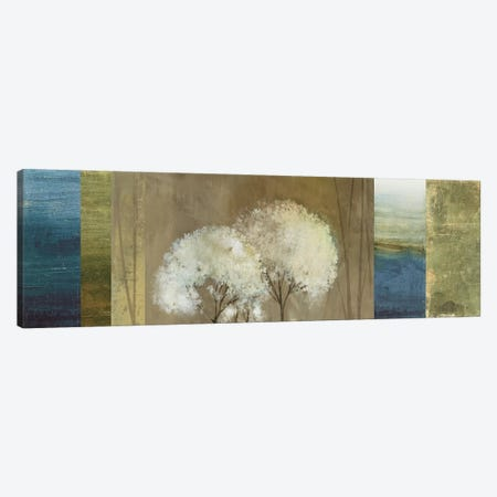 Grasses I Canvas Print #ASJ128} by Asia Jensen Canvas Art Print