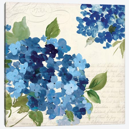 Hampton Hydrangea I Canvas Print #ASJ130} by Asia Jensen Canvas Wall Art