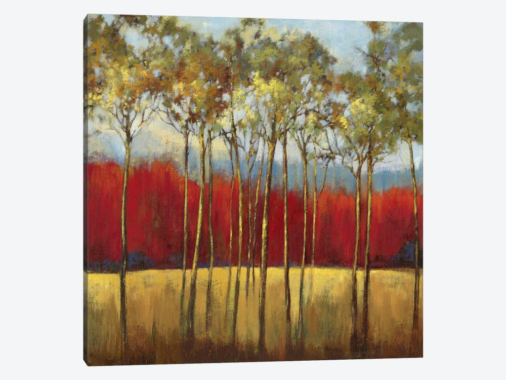 In The Horizon I by Asia Jensen 1-piece Canvas Wall Art