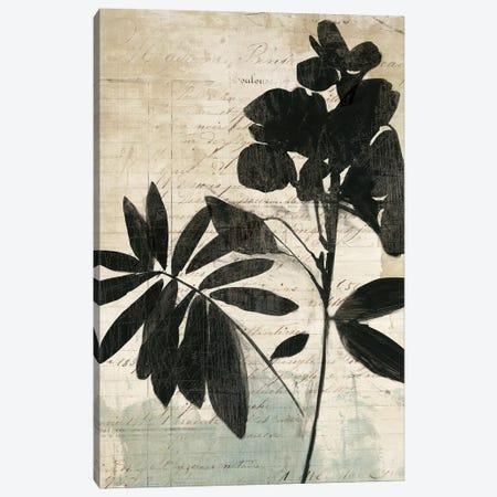 Inky Floral II Canvas Print #ASJ150} by Asia Jensen Canvas Artwork