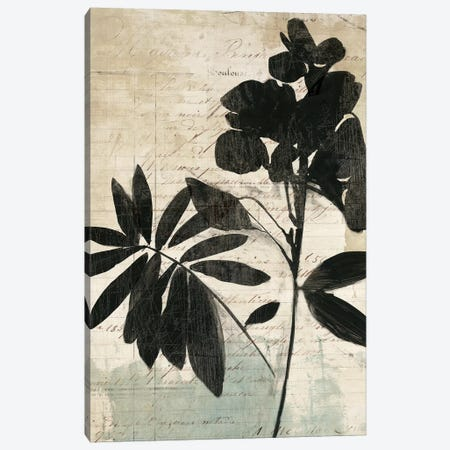Inky Floral II Canvas Print #ASJ150} by Asia Jensen Canvas Artwork