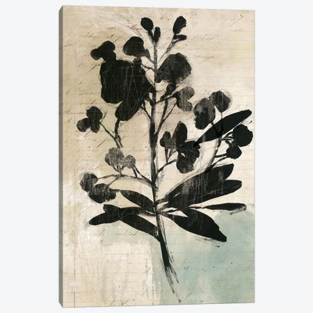 Inky Floral III Canvas Print #ASJ151} by Asia Jensen Canvas Artwork
