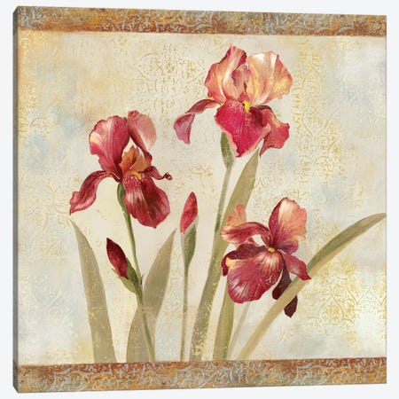 Iris Tapestry I Canvas Print #ASJ152} by Asia Jensen Canvas Art
