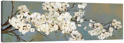 Kimono III Canvas Art Print