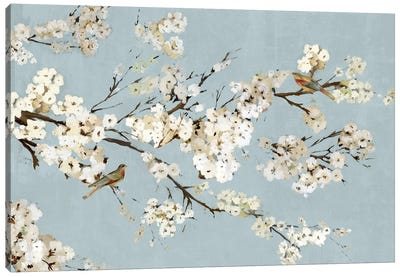 Kimono With Birds I Canvas Art Print