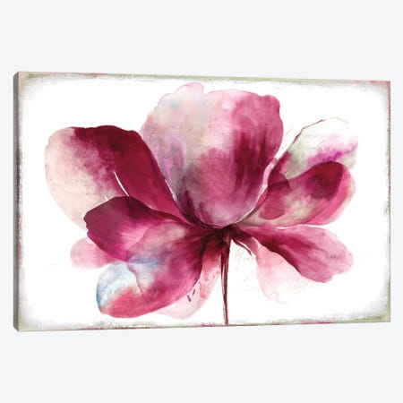 Lilya I Canvas Print #ASJ174} by Asia Jensen Canvas Print