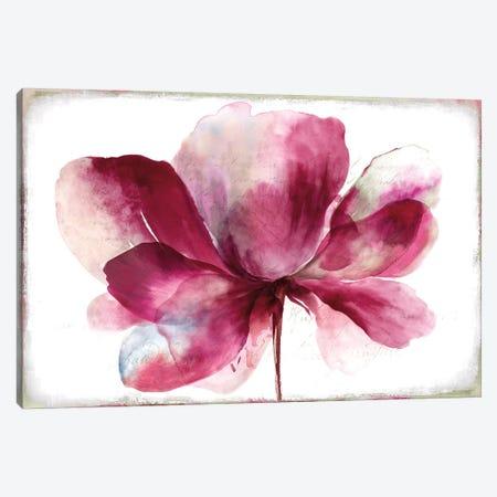 Lilya I Canvas Print #ASJ174} by Asia Jensen Canvas Print