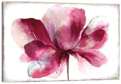 Lilya I Canvas Art Print