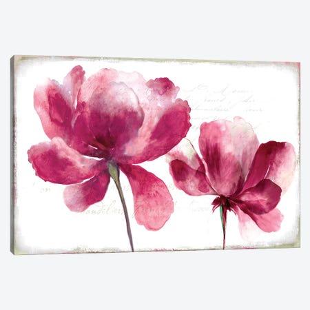 Lilya II Canvas Print #ASJ175} by Asia Jensen Art Print