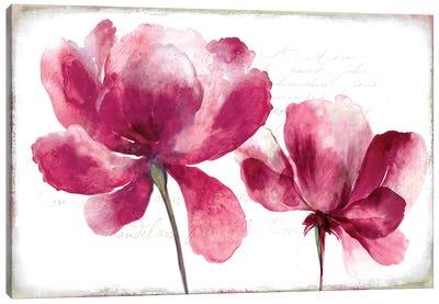 Lilya II Canvas Art Print