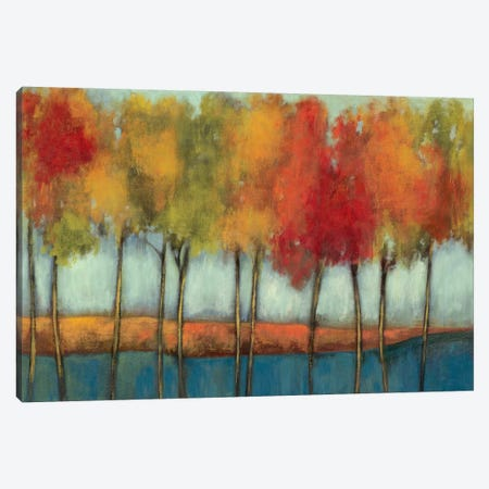 Lollipop Trees Canvas Print #ASJ177} by Asia Jensen Canvas Print