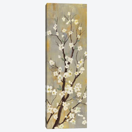 Balance I Canvas Print #ASJ17} by Asia Jensen Canvas Wall Art
