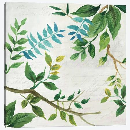 Lush Leaves Canvas Print #ASJ180} by Asia Jensen Art Print