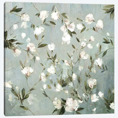 Magnolias I Canvas Print #ASJ181} by Asia Jensen Canvas Print