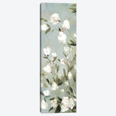 Magnolias II Canvas Print #ASJ182} by Asia Jensen Canvas Art Print