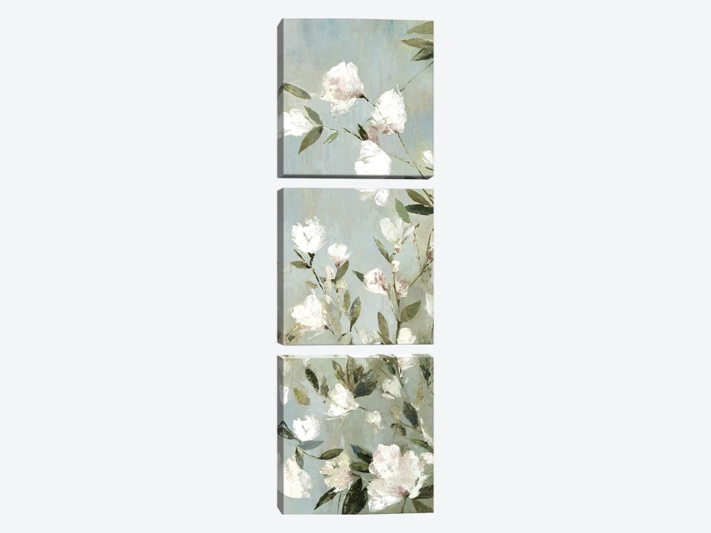 Magnolias II by Asia Jensen 3-piece Canvas Art
