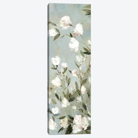 Magnolias II Canvas Print #ASJ182} by Asia Jensen Canvas Art Print