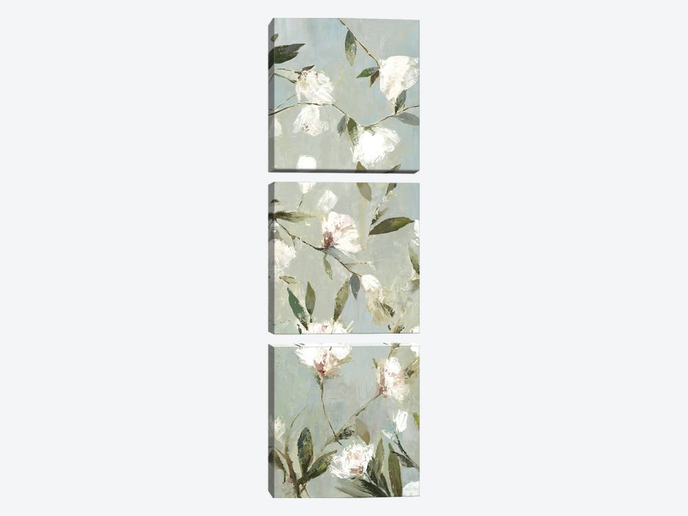 Magnolias III by Asia Jensen 3-piece Canvas Print