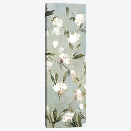 Magnolias III Canvas Print #ASJ183} by Asia Jensen Art Print