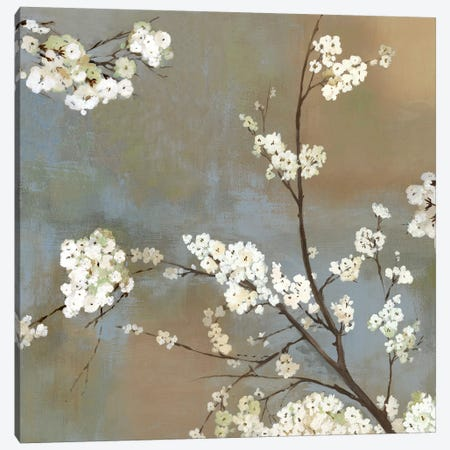 Ode To Spring I Canvas Print #ASJ199} by Asia Jensen Canvas Art