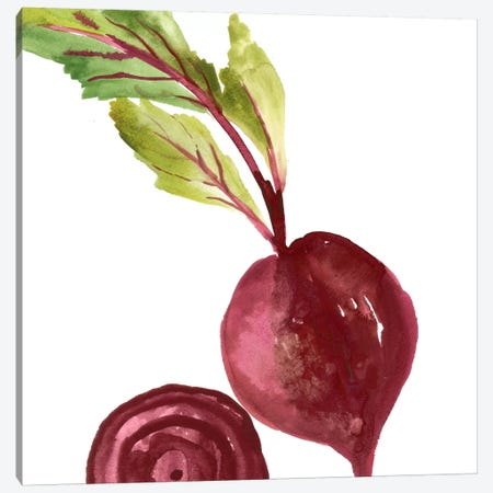 Beet Canvas Print #ASJ19} by Asia Jensen Art Print