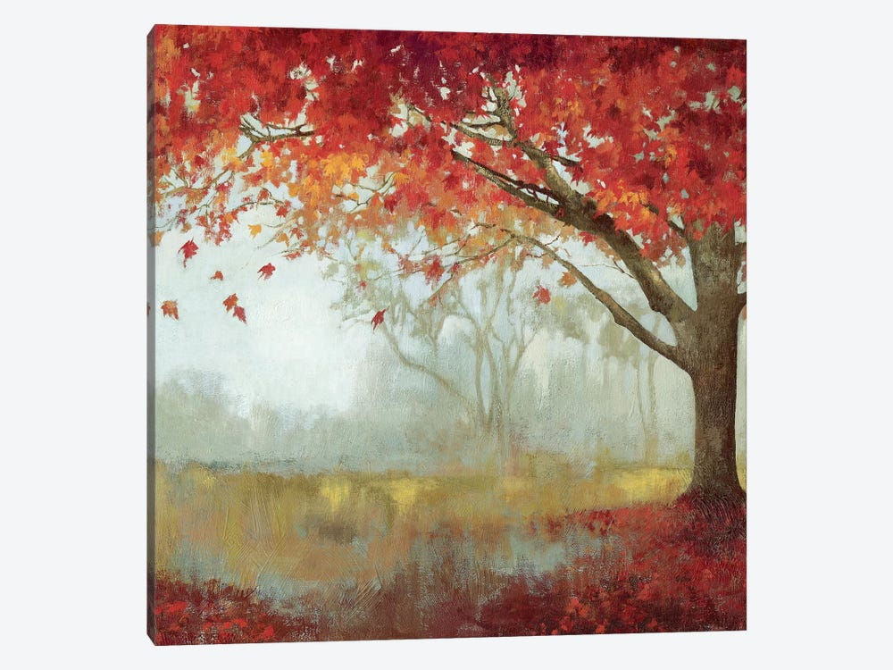 A Sense Of Space I by Asia Jensen 1-piece Canvas Art Print