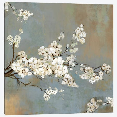 Ode To Spring II Canvas Print #ASJ200} by Asia Jensen Canvas Art