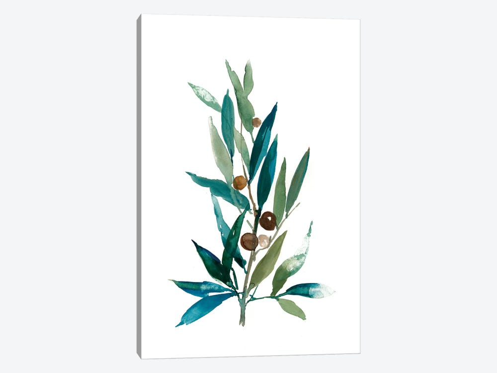 Olive Branch I by Asia Jensen 1-piece Canvas Art Print