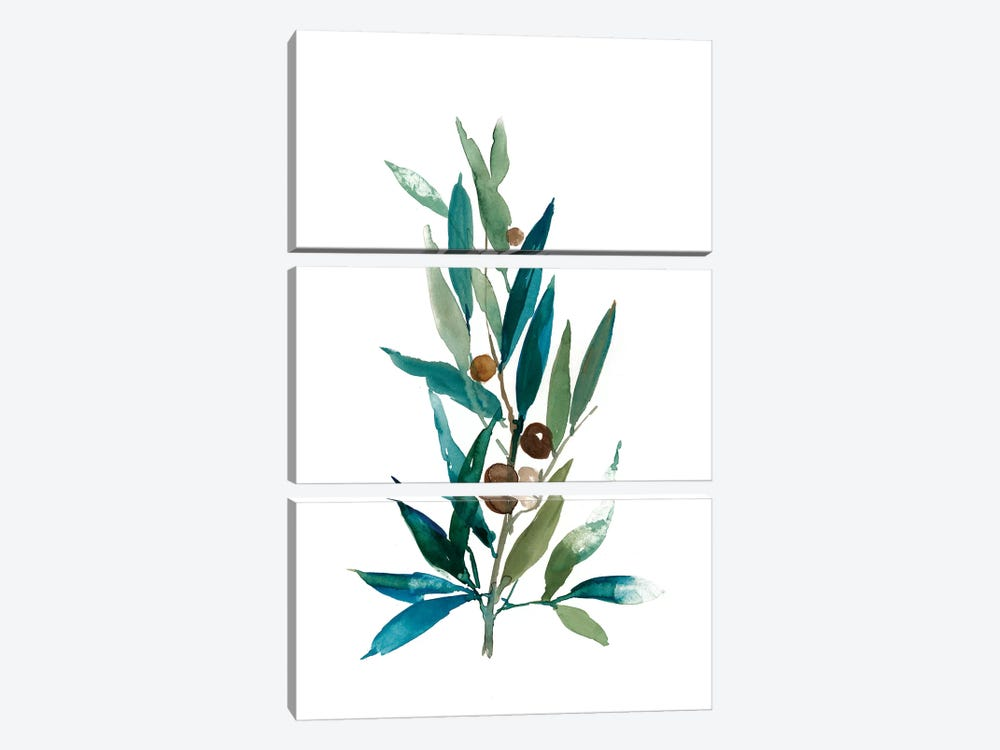 Olive Branch I by Asia Jensen 3-piece Art Print