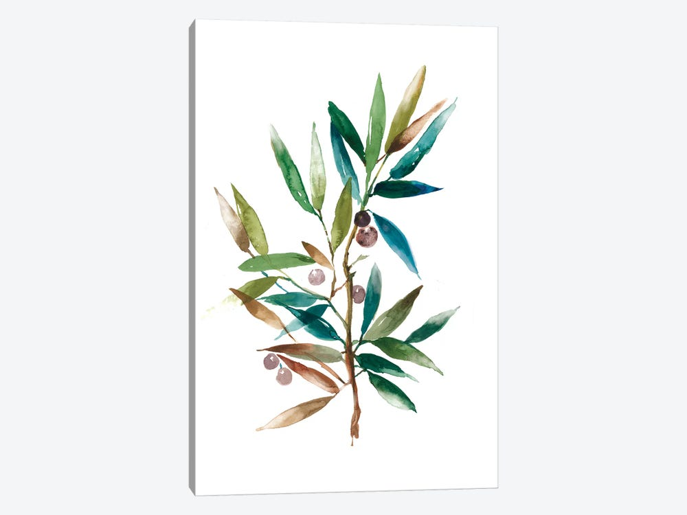 Olive Branch II 1-piece Canvas Wall Art