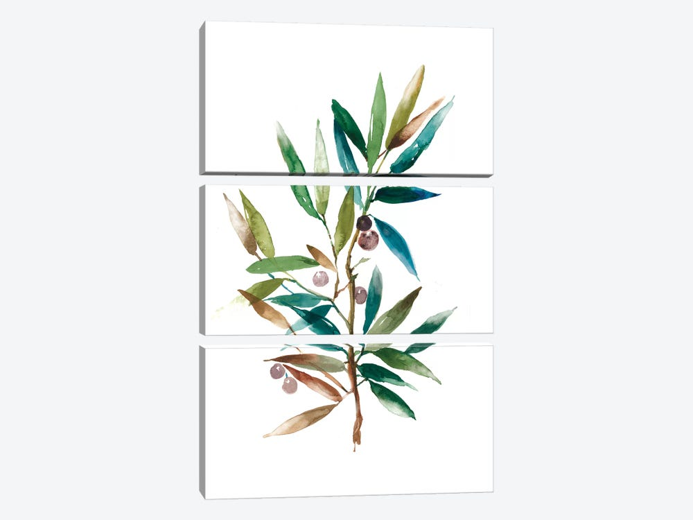 Olive Branch II 3-piece Canvas Artwork