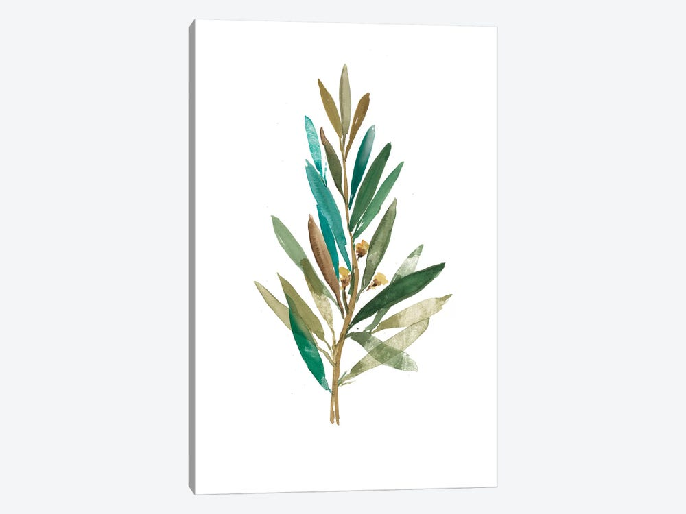 Olive III by Asia Jensen 1-piece Canvas Print