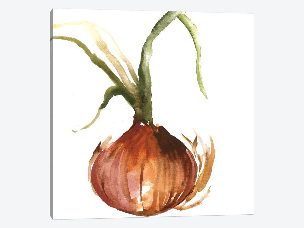 Onion by Asia Jensen 1-piece Canvas Art Print