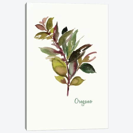 Oregano Canvas Print #ASJ214} by Asia Jensen Canvas Wall Art