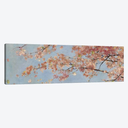 Osaka Blossoms I Canvas Print #ASJ217} by Asia Jensen Canvas Artwork