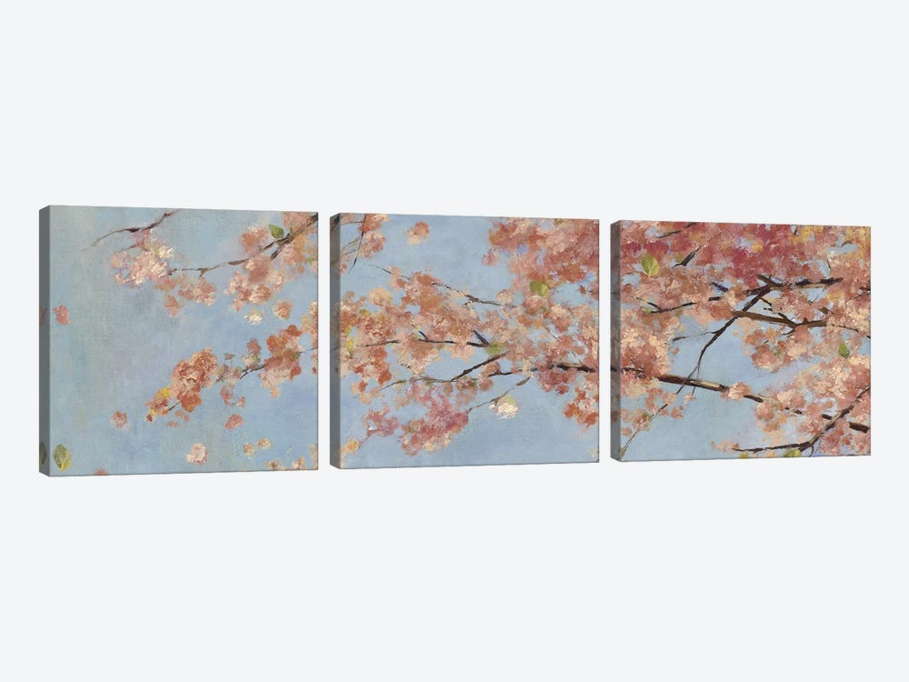 Osaka Blossoms I by Asia Jensen 3-piece Canvas Wall Art