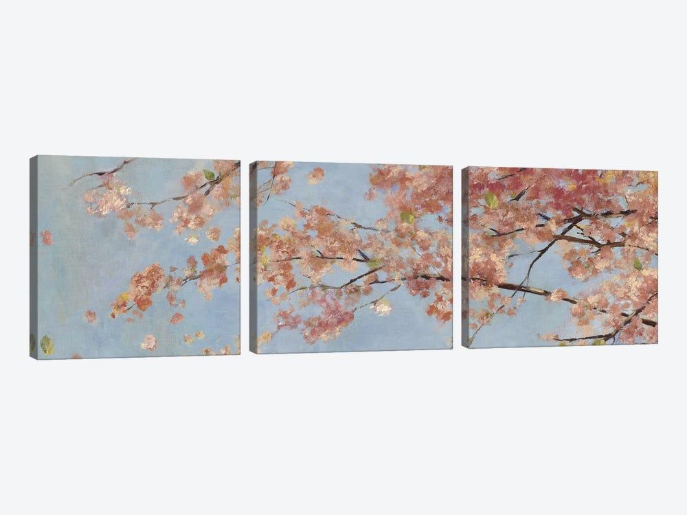 Osaka Blossoms I by Asia Jensen 3-piece Canvas Wall Art