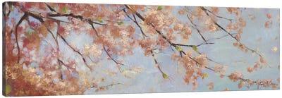 Osaka Blossoms II Canvas Art Print