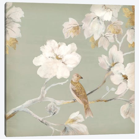 Paradise Magnolia I Canvas Print #ASJ226} by Asia Jensen Canvas Art Print