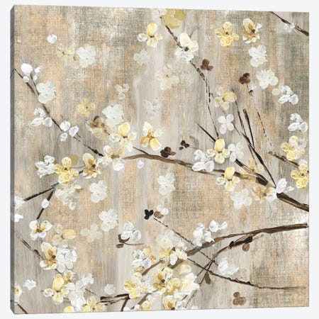Pearls In Bloom I Canvas Print #ASJ231} by Asia Jensen Art Print