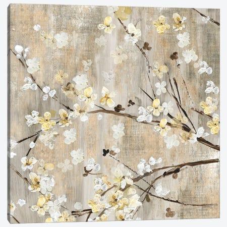 Pearls In Bloom I Canvas Print #ASJ231} by Asia Jensen Art Print