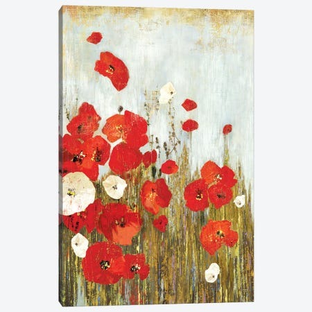 Poppies In The Wind Canvas Print #ASJ234} by Asia Jensen Canvas Artwork