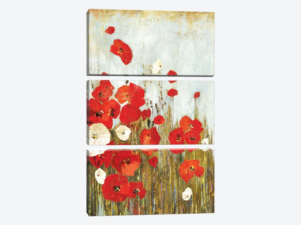 Poppies In The Wind by Asia Jensen 3-piece Art Print