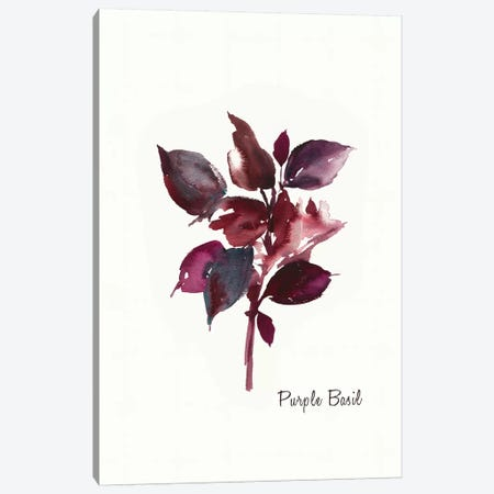 Purple Basil Canvas Print #ASJ239} by Asia Jensen Canvas Art Print