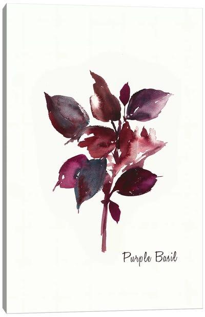 Purple Basil Canvas Art Print